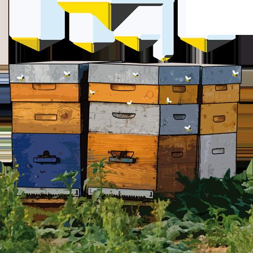 parrainage ruches